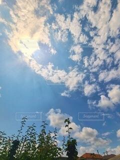 青空と雲の写真の写真・画像素材[4624173]