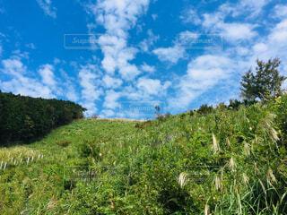 登山時の空の写真・画像素材[4574911]