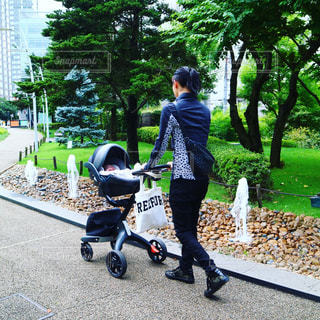 散歩の写真・画像素材[737298]