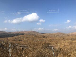 乾いた草原と空の写真・画像素材[4617732]