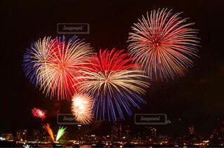 夜空の花火の写真・画像素材[4620401]
