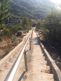 急な山道の写真・画像素材[4620417]