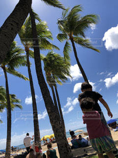 ハワイ ビーチの写真・画像素材[4597696]