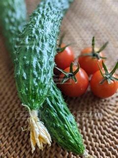 穫れたて新鮮、花つきトゲトゲ胡瓜とヘタつんつんプチトマト。の写真・画像素材[4637238]