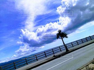海!の写真・画像素材[4626452]