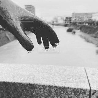 水滴の写真・画像素材[4730562]