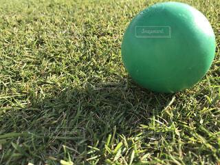 緑のボールの写真・画像素材[4731737]
