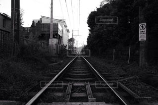 No.203674 風景