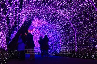 光のトンネルの写真・画像素材[904965]