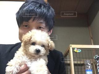 犬を保持している男の子 - No.904141