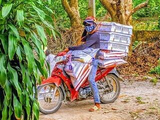 ベトナムの運び屋の写真・画像素材[4630554]