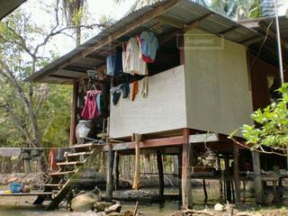 タイの日常の写真・画像素材[209762]