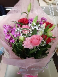 テーブルの上にピンクの花の写真・画像素材[4816746]