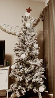 雪の積もったクリスマスツリーの写真・画像素材[4626865]
