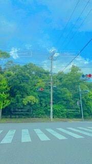 横断歩道の写真・画像素材[4650839]