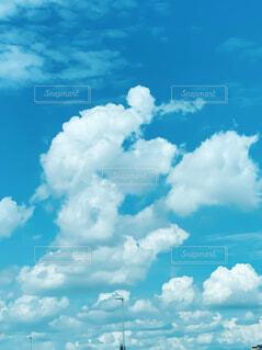 雲の形がトイプードルの写真・画像素材[4785557]