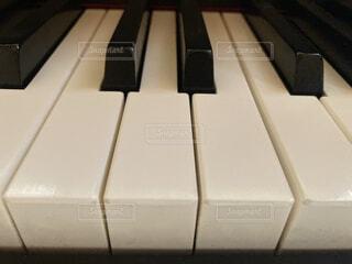 ピアノ鍵盤の写真・画像素材[4699386]