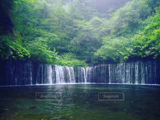 自然の写真・画像素材[206440]