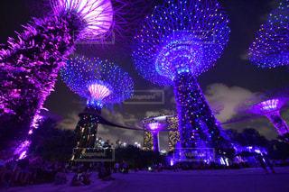 シンガポール - No.394221