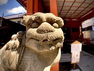 狛犬(吽)の写真・画像素材[4670923]