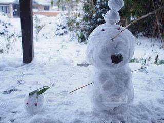 冬の写真・画像素材[206003]