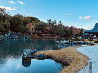 池の写真・画像素材[4873439]