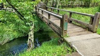 川と橋の写真・画像素材[4642844]