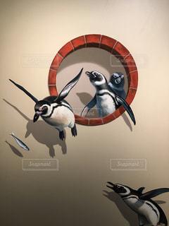 空を飛んでいるペンギンの写真・画像素材[1194869]