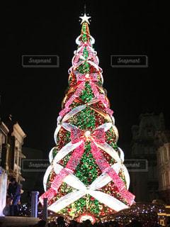 クリスマスツリーの写真・画像素材[1195574]