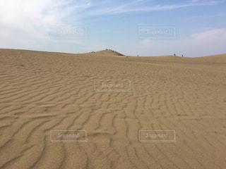 鳥取砂丘の写真・画像素材[1201877]