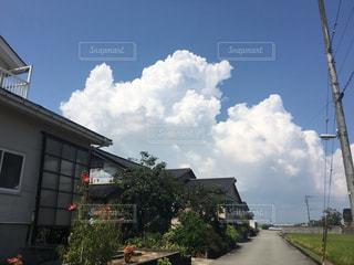 田舎の夏の写真・画像素材[1204157]