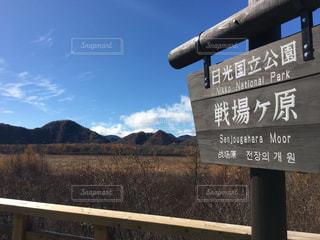 戦場ヶ原の写真・画像素材[1207906]