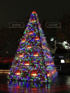夜ライトアップされたクリスマス ツリーの写真・画像素材[1209210]