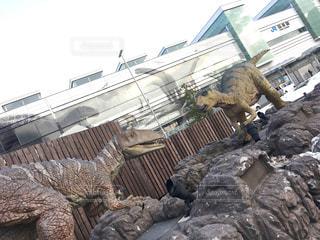 恐竜対恐竜の写真・画像素材[1213543]