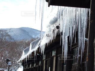 冬の写真・画像素材[206676]
