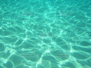 海の中の写真・画像素材[2491062]