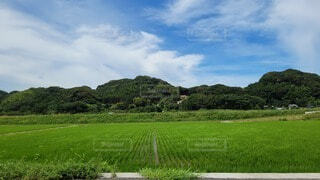 田舎の風景の写真・画像素材[4668238]