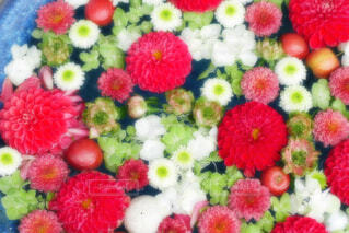 【行田花手水week】行田八幡神社の花手水の写真・画像素材[4651941]