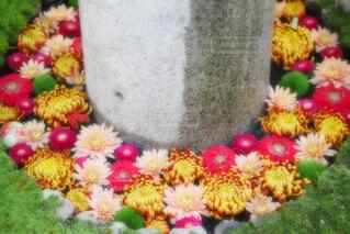 【行田花手水week】行田八幡神社の花手水の写真・画像素材[4692582]