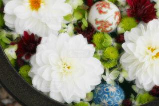 【行田花手水week】行田市の花手水の写真・画像素材[4740887]