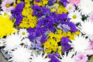 【行田花手水week】前玉神社の花手水の写真・画像素材[4773878]