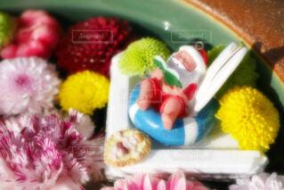 【行田花手水week】行田市の花手水の写真・画像素材[4814971]