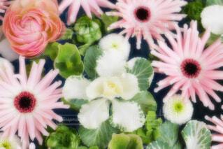 【行田花手水week】行田八幡神社の花手水の写真・画像素材[4889417]