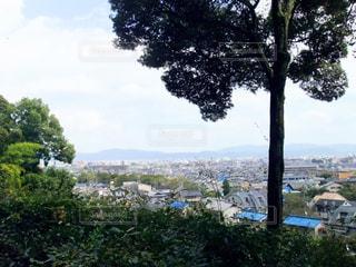 高台から見下ろす街並みの写真・画像素材[213565]