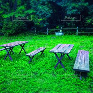 公園 - No.592373