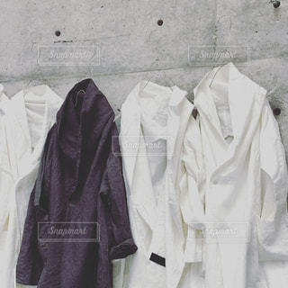 ファッション - No.206991