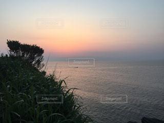 自然の写真・画像素材[208366]