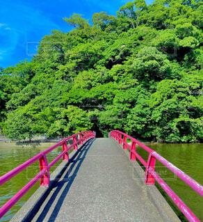 島へと続く赤い橋の写真・画像素材[4665055]