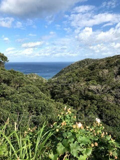 奄美大島の空と海の写真・画像素材[4674006]