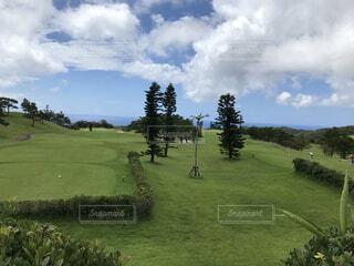 奄美大島の風景の写真・画像素材[4686568]